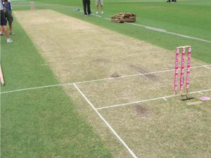 What are the dimensions of a cricket pitch?
