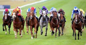 horse-racing-sport