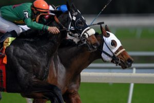horse-racing-covid-19