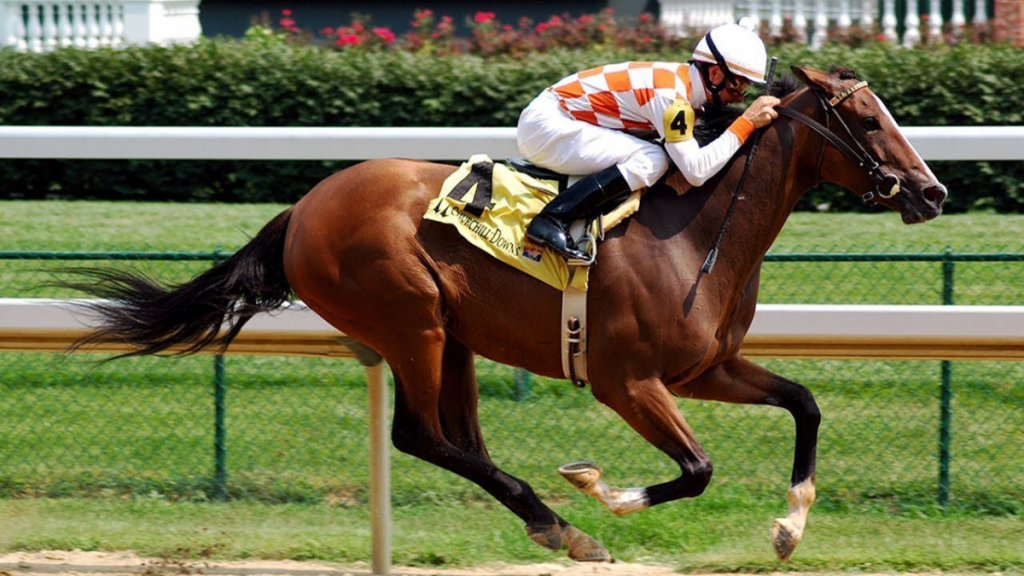 What Is The Best Breed For Horse Racing?