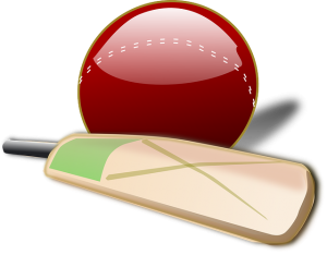 Who played the slowest innings in Test cricket?